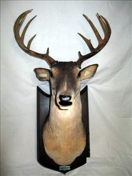 Singing Plastic Deer