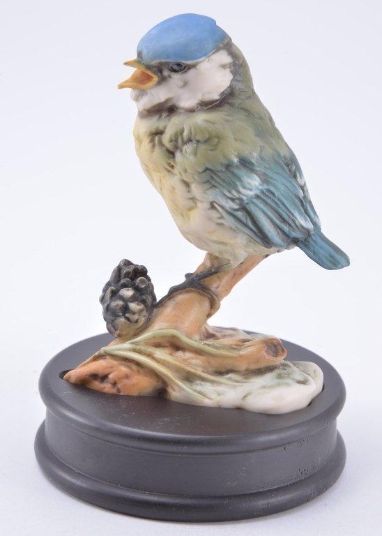 Kaiser Baby Blue Bird - 2