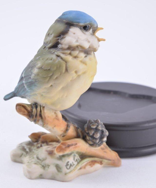 Kaiser Baby Blue Bird - 3