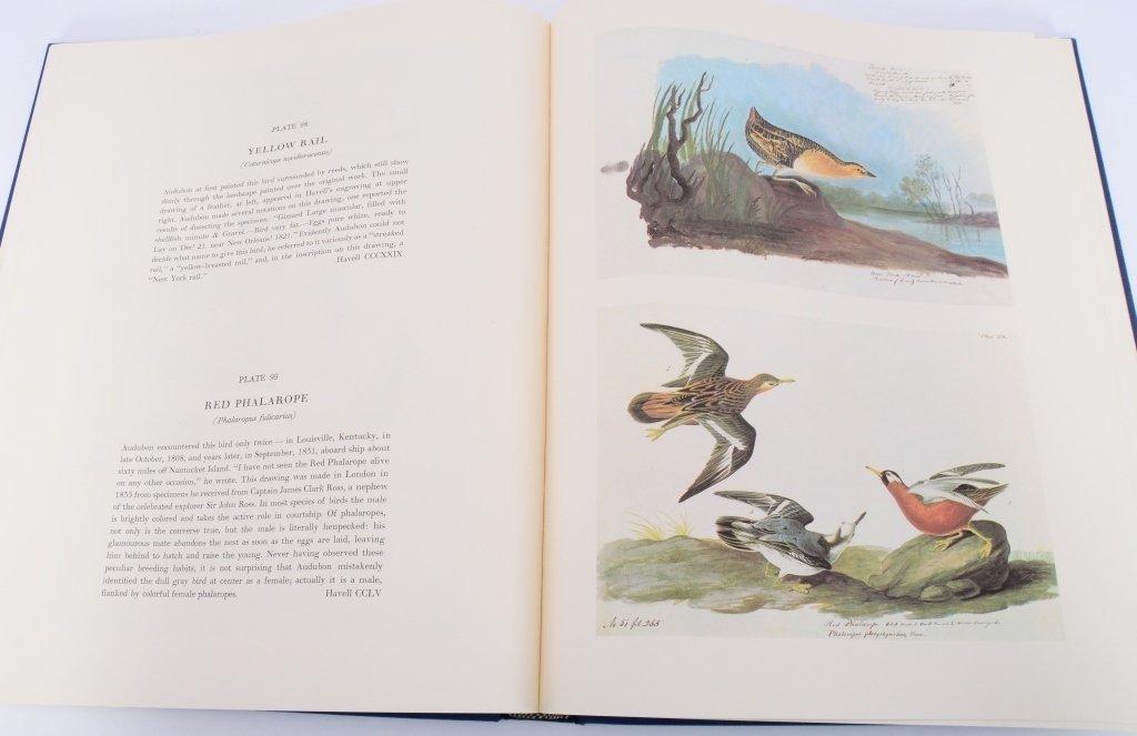 Audubon Birds of America 2 Vol. Set - 4