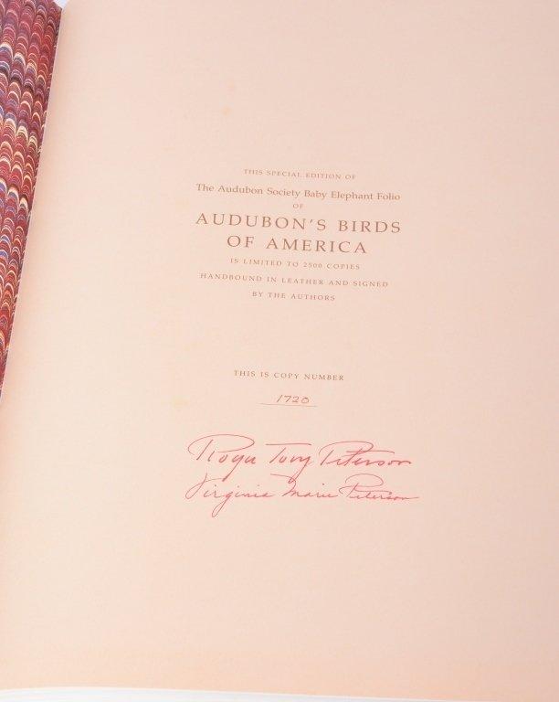 Peterson's Audubon's Birds of America - 4