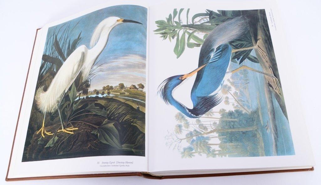 Peterson's Audubon's Birds of America - 6
