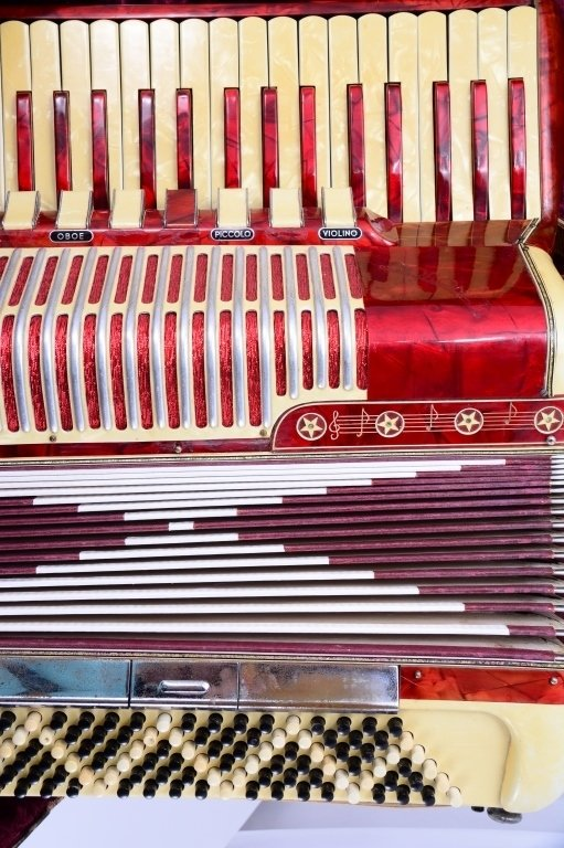 Vintage Accordion in Fitted Suitcase - 6