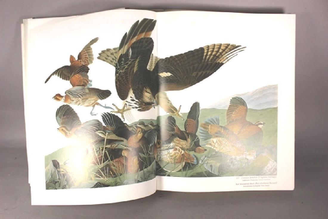 Audubon's Birds of America - 3