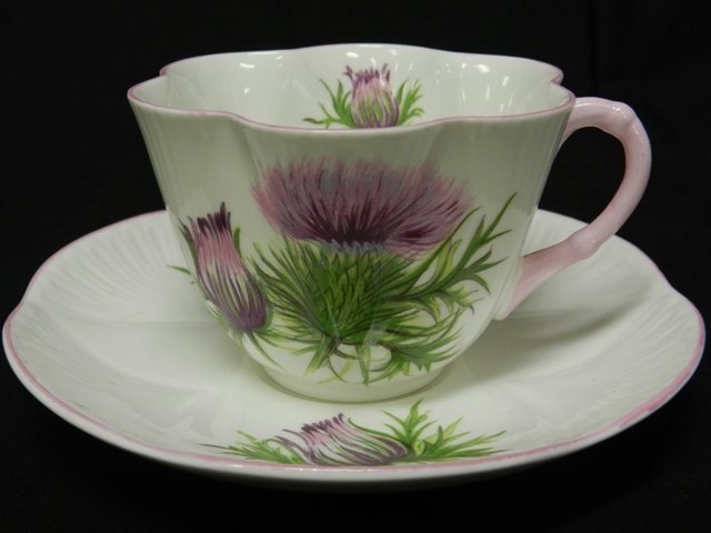 20: Shelly Cup And Saucer