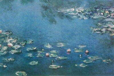 1E: Waterlillies Print