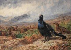 Archibald Thorburn (British, 1860-1935)