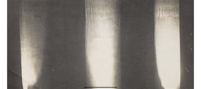Attributed to Anton Bragaglia (1890-1960); Décor,