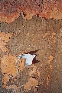 Dennis Hopper (1936-2010); Morocco (Terracotta Peel);