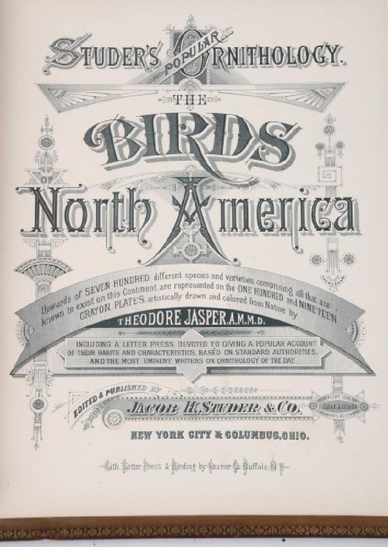 Jacob Studer - Birds Of North America Book - 3