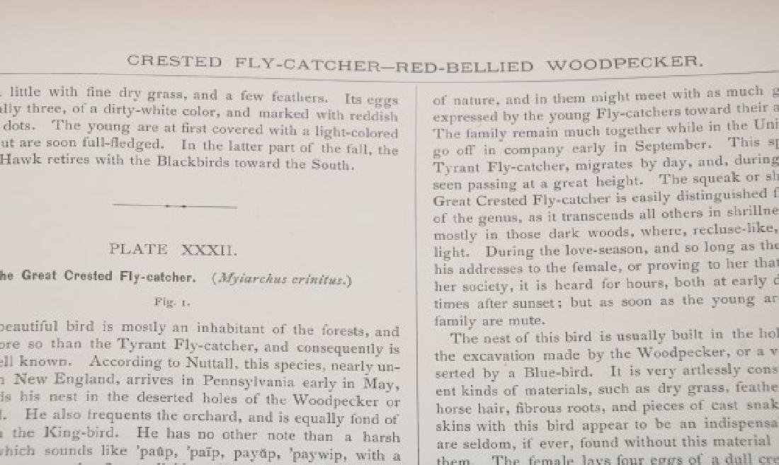 Jacob Studer - Birds Of North America Book - 8
