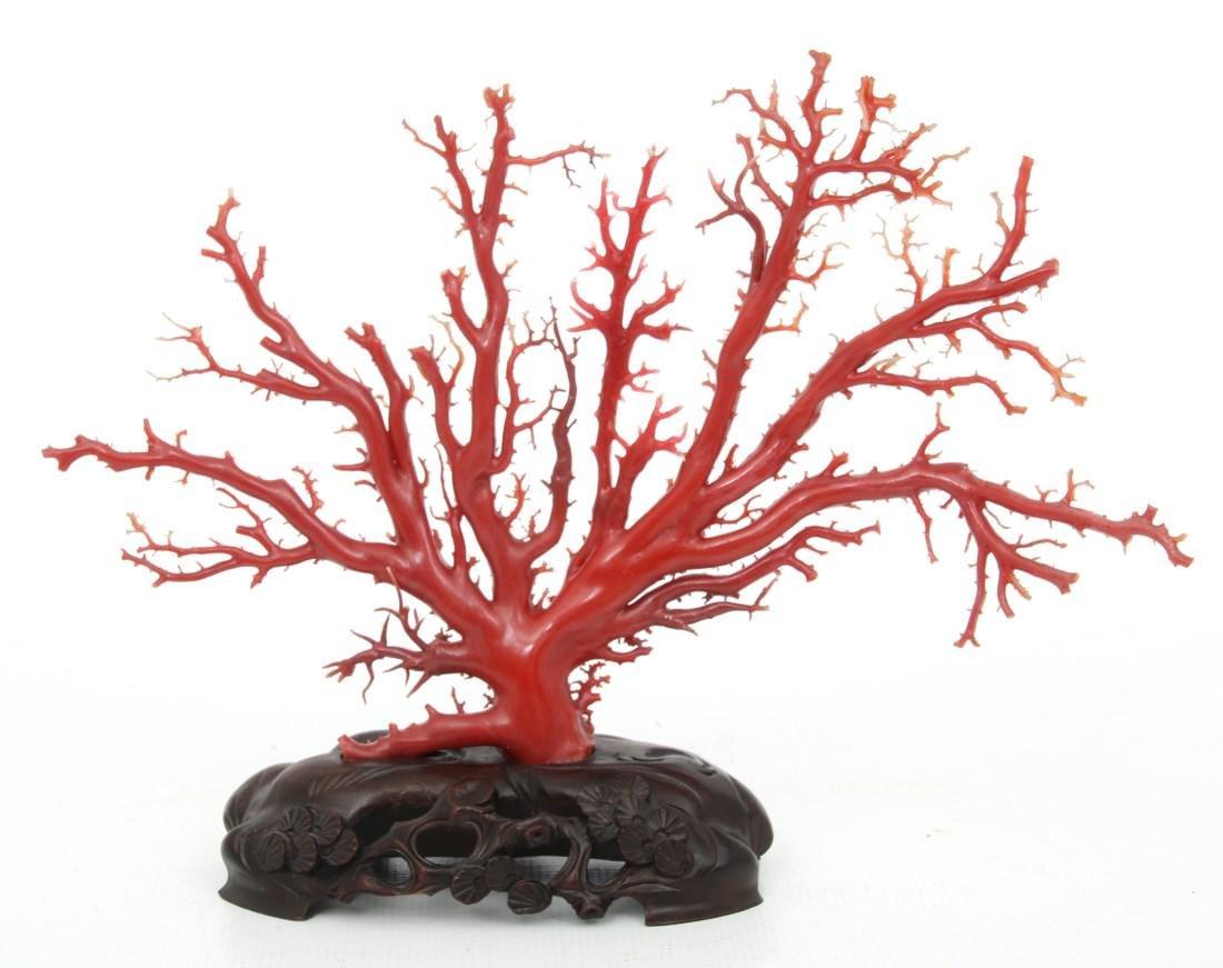 Large Natural Red Coral Specimen - 2