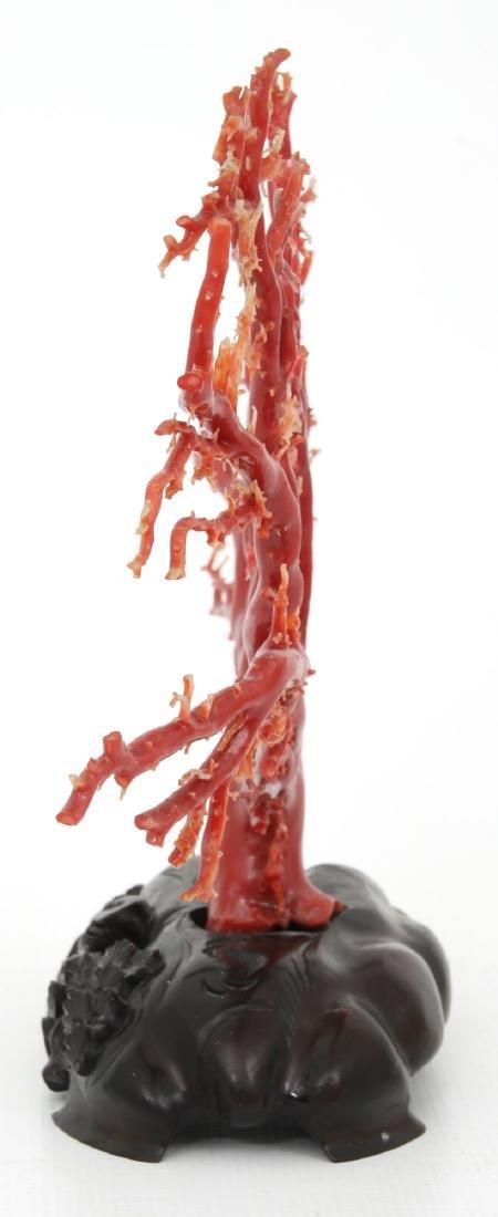 Large Natural Red Coral Specimen - 7