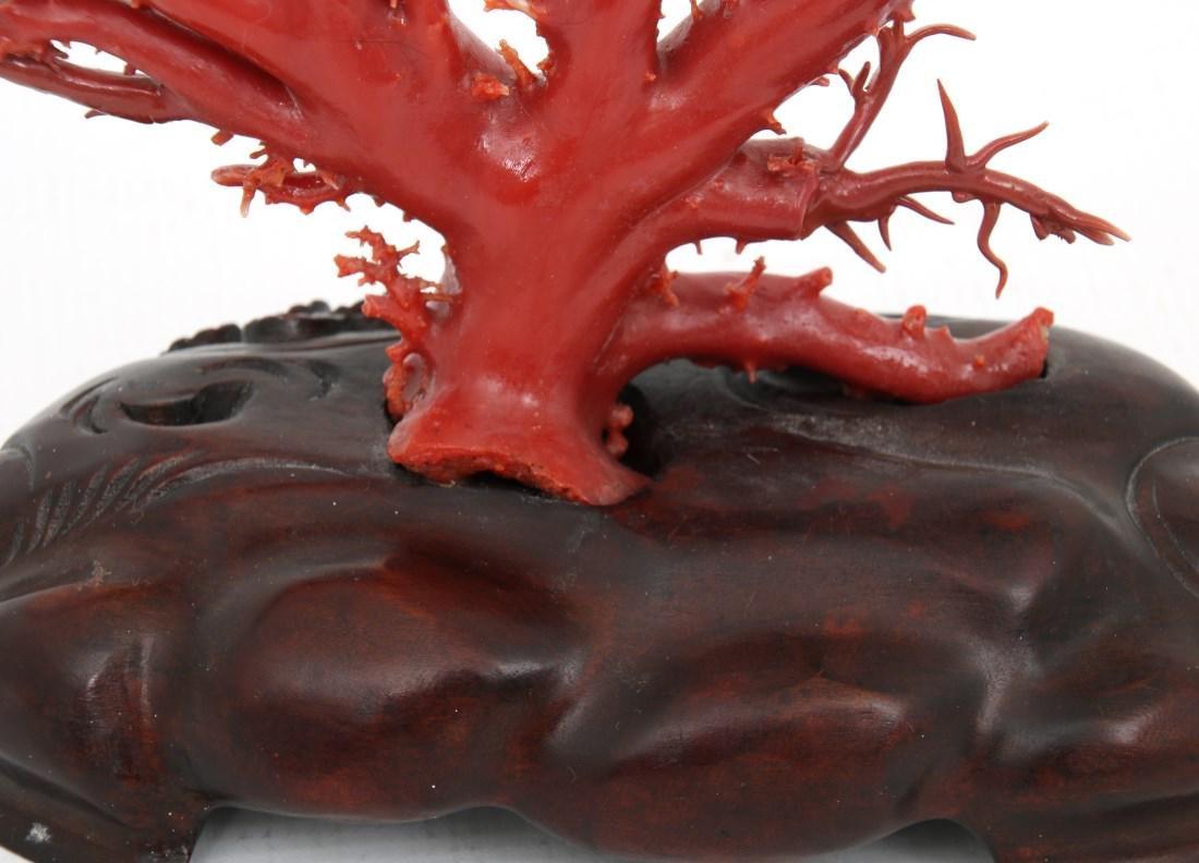 Large Natural Red Coral Specimen - 9