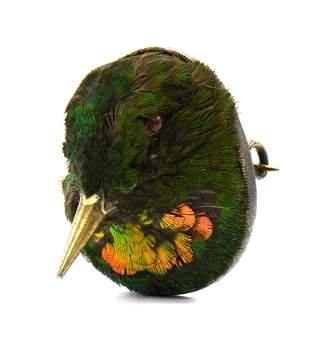 Victorian Taxidermy Hummingbird Brooch