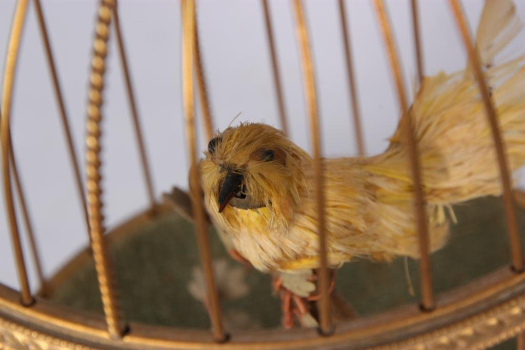 14: French Singing Birdcage Automaton - 4