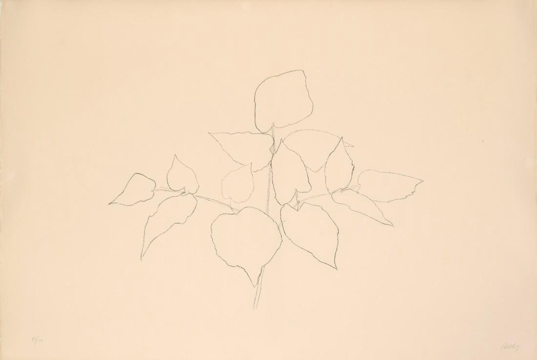 Ellsworth Kelly WOODLAND PLANT Lithograph - 3