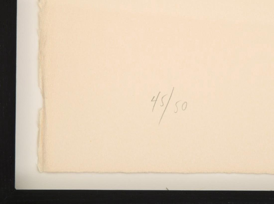 Ellsworth Kelly WOODLAND PLANT Lithograph - 4