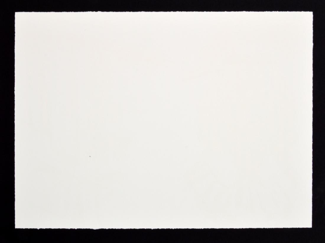 Raymond Pettibon Lithograph, Signed Edition - 4