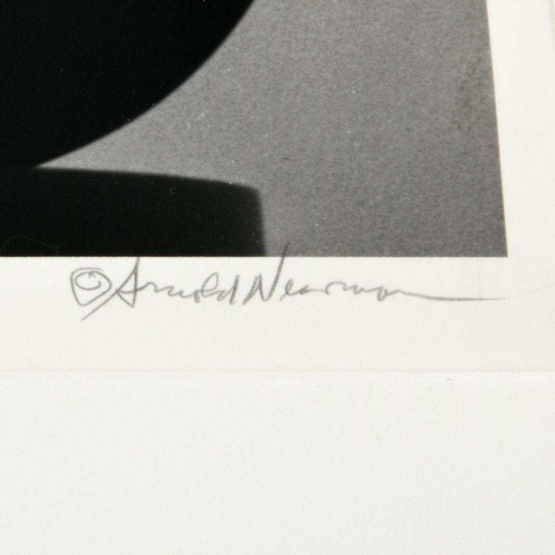 Arnold Newman IGOR STRAVINSKY Photograph - 3