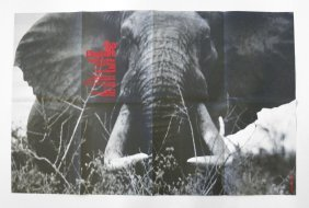 "24: Peter Beard ""Elephant"" Poster Invitation +"