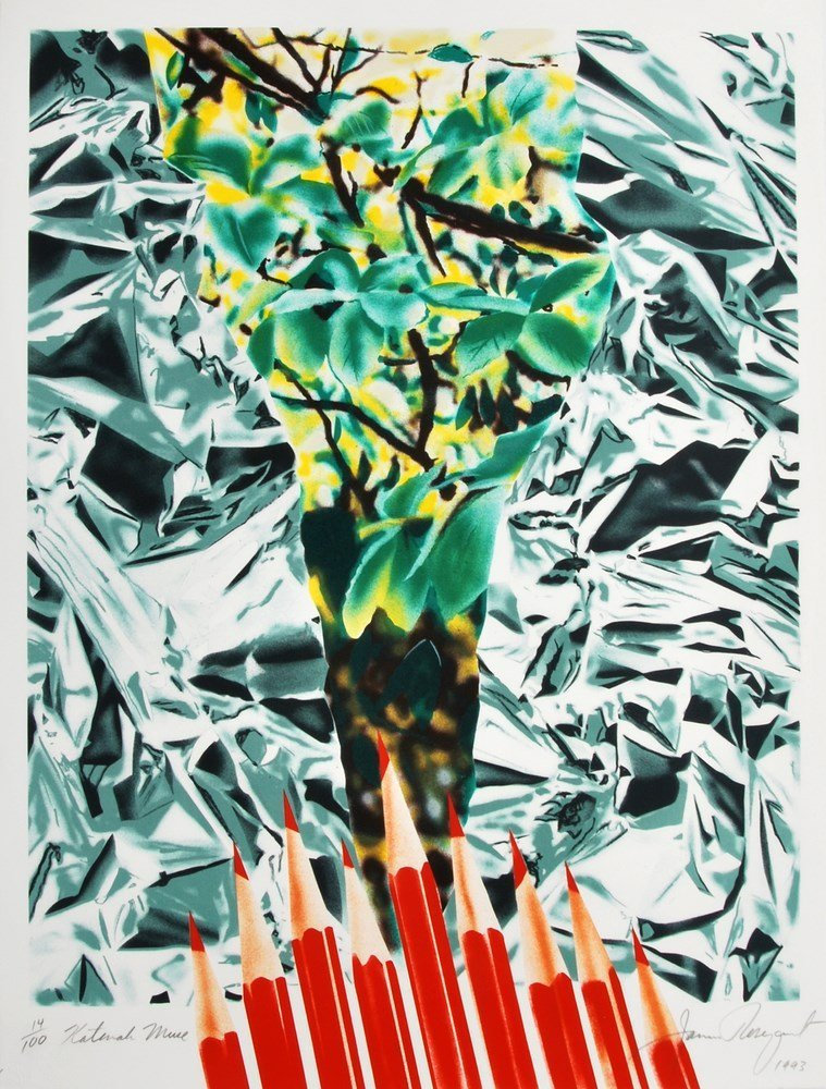 James Rosenquist Lithograph