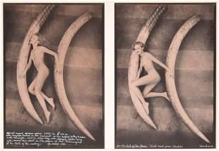 Peter Beard Gelatin Silver Prints, Diptych