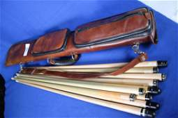 Anstroke Billiard Case w/10 Cue Stick Shafts