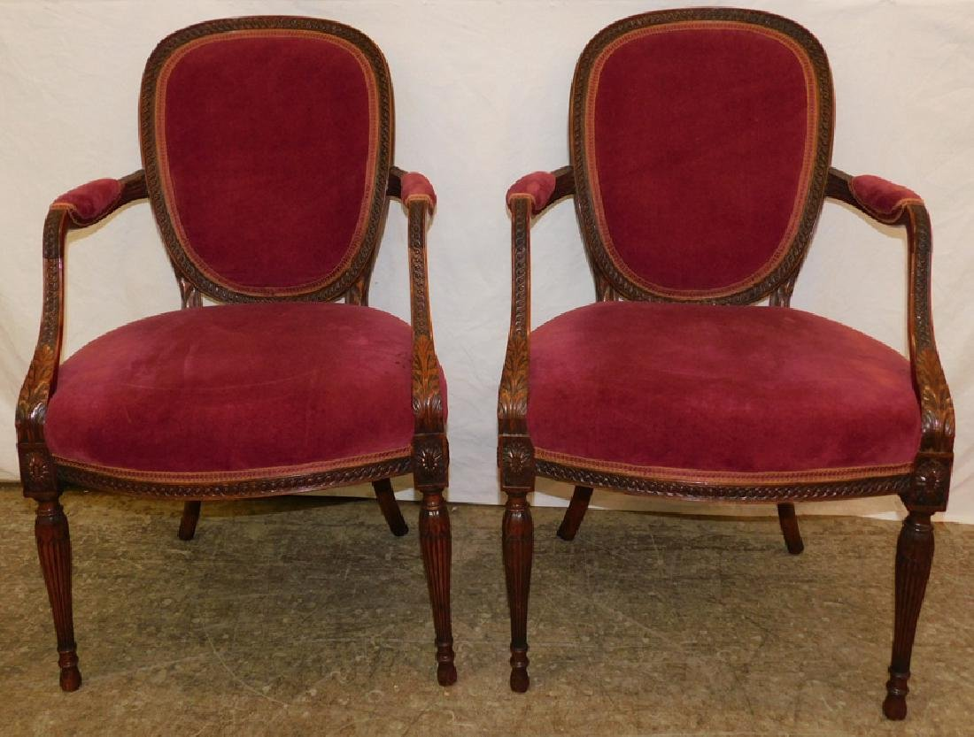 Pr rosewood Sheraton carved cameo back fauteuils.