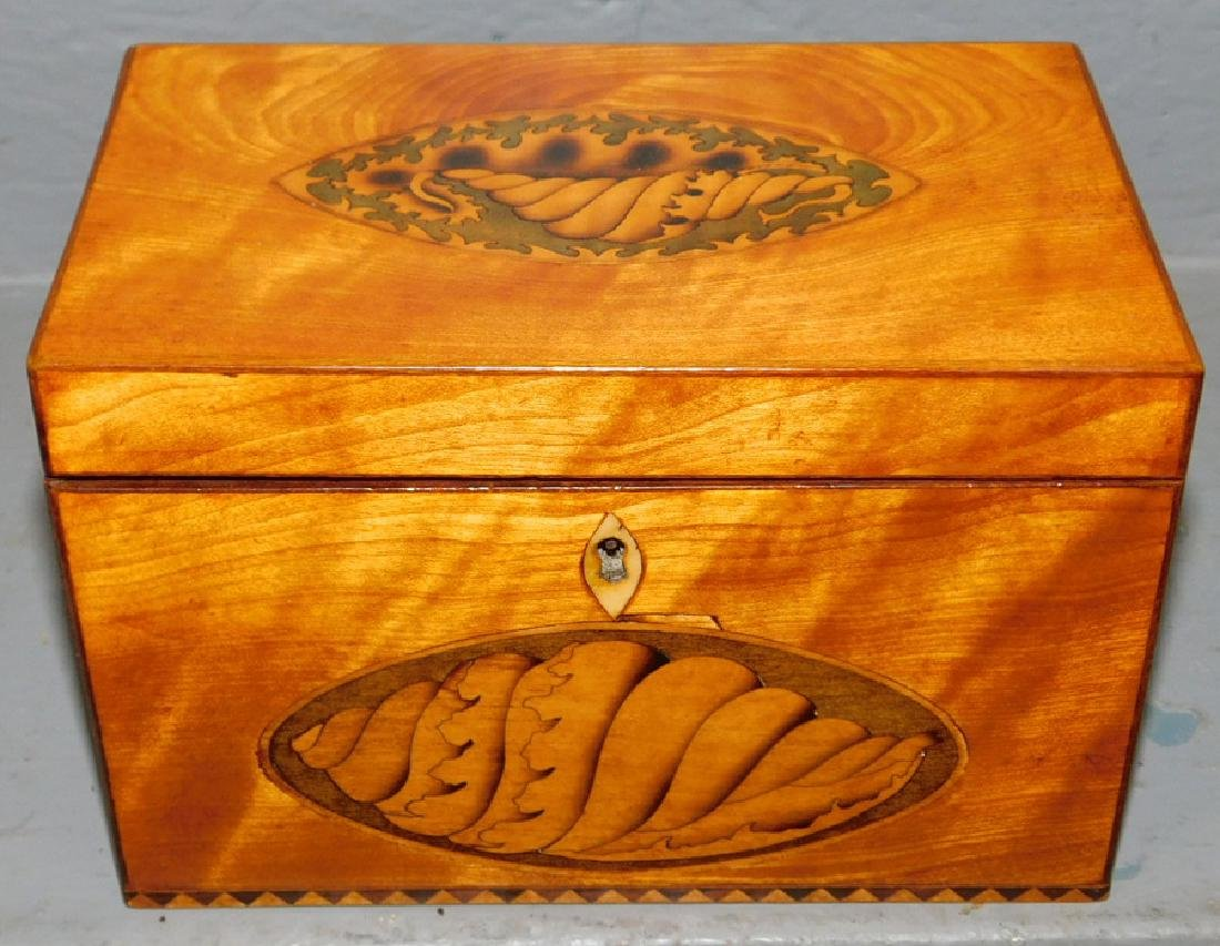 Satinwood conch shell fitted tea caddy.