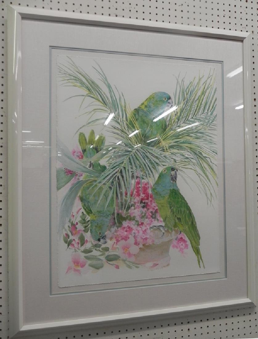 Framed watercolor or print of parrots