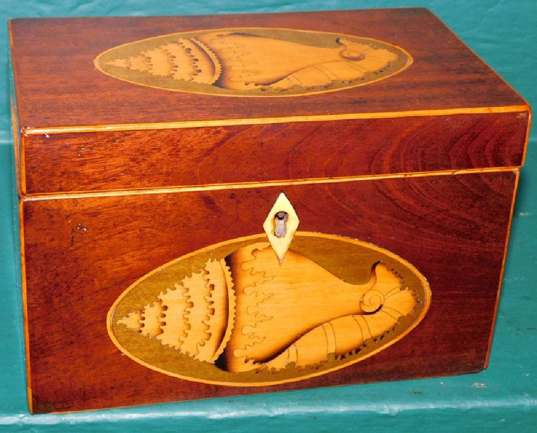 Mahog inlaid tea caddy w/ double conch shell
