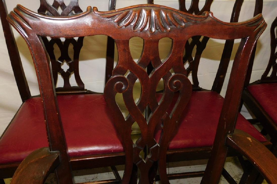 6 mahogany Chippendale leather set chairs - 3