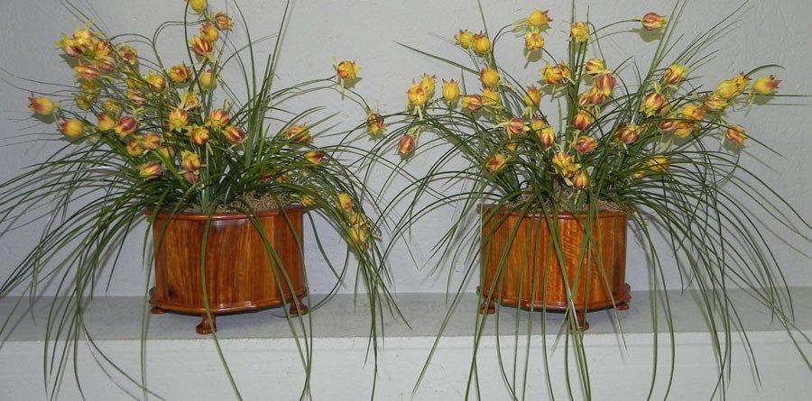 109: Pair of decorator mahogany jardinières