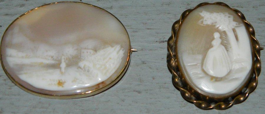 (2) Beautiful cameo pins.