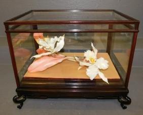 Carved bone iris in glass case.