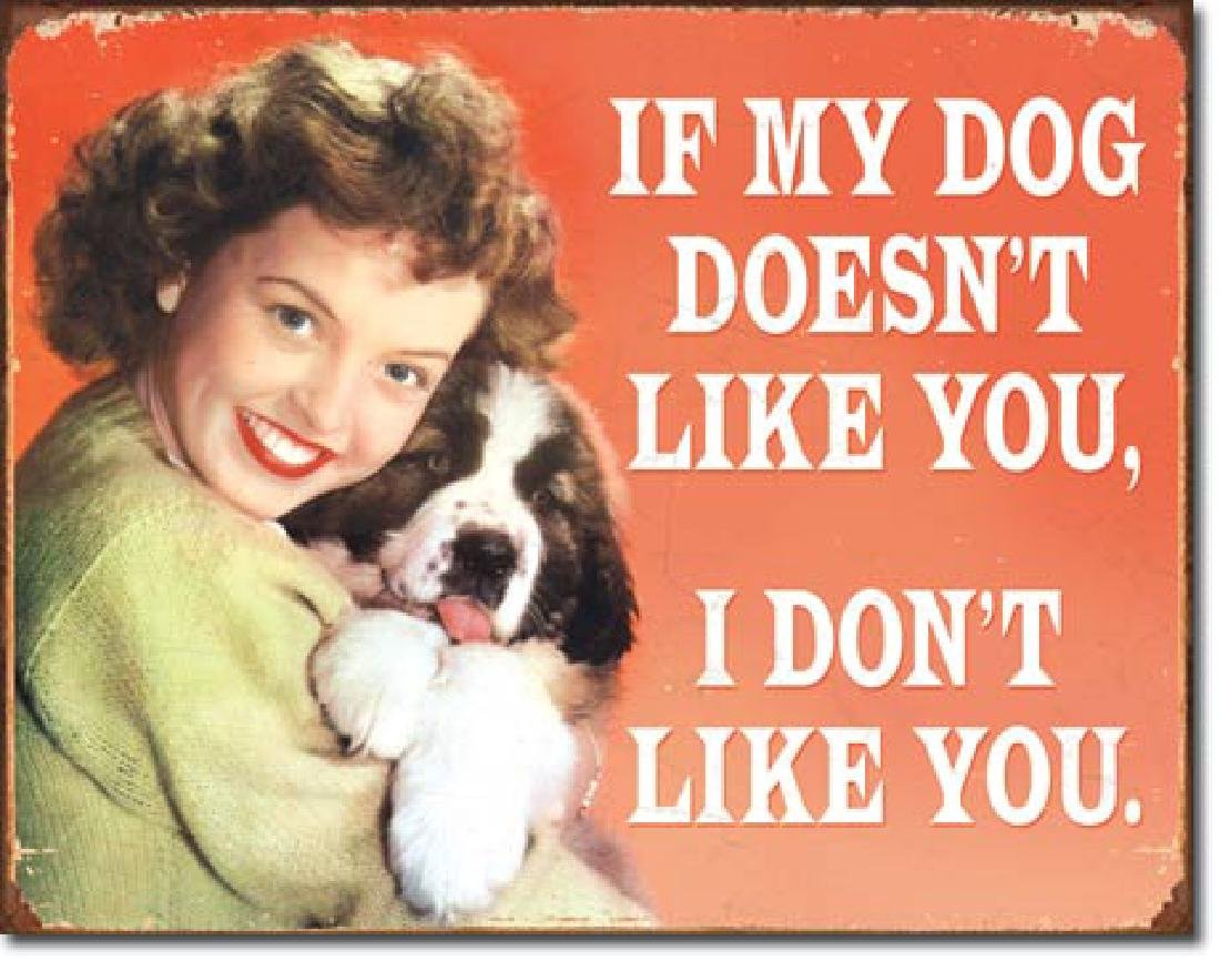 "MY DOG DOESNT LIKE YOU FUNNY METAL SIGN 12.5"" X 16"""
