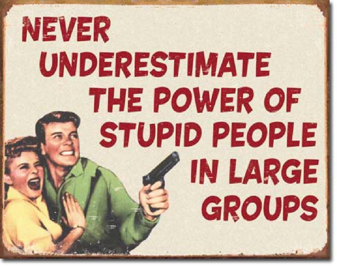 "STUPID PEOPLE FUNNY METAL SIGN 12.5"" X 16"""