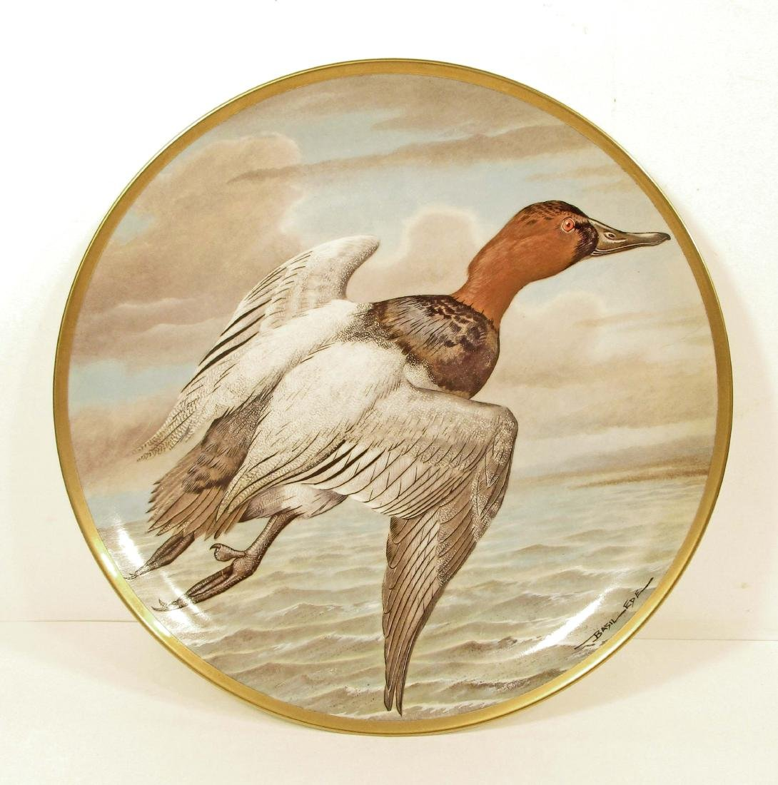 VINTAGE BASIL EDE WATER BIRDS OF THE WORLD CANVASBACK