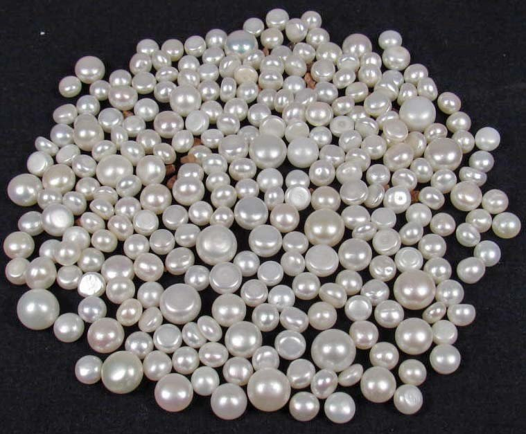 22: LOT OF 237.2 CTS. OF FRESH WATER FLAT BUTTON PEARLS