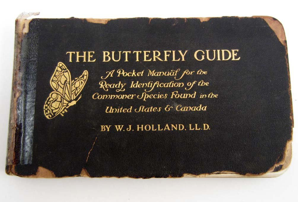"1916 ""THE BUTTERFLY GUIDE"" LEATHER COVERED BOOK"