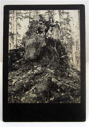 EARLY MOUNTED PHOTO OF LOGGERS AT SHOALTZ CAMP HOQUIAM