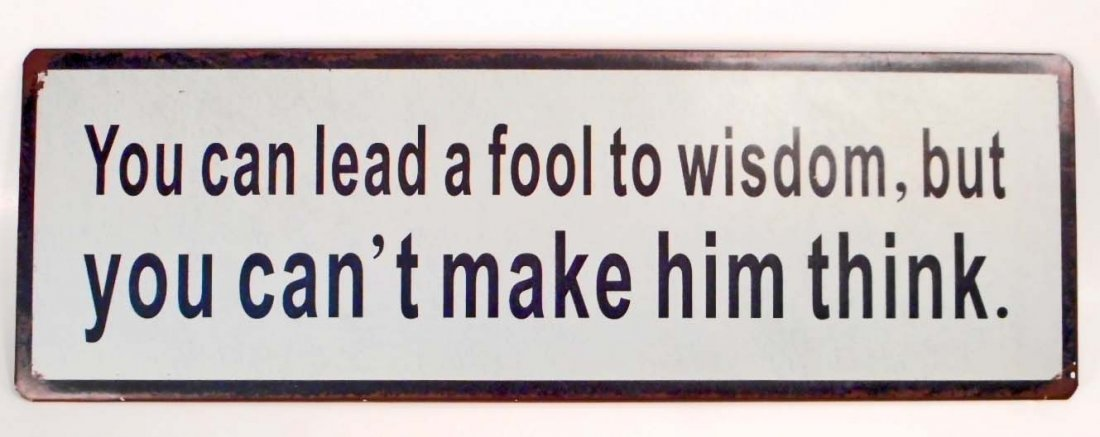 LEAD A FOOL TO WISDOM FUNNY METAL SIGN