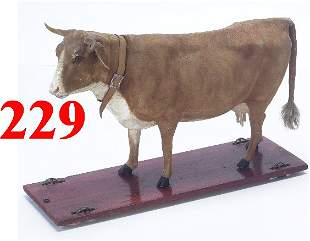 Cow on Platform