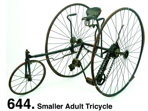 644: Smaller Adult Tricycle