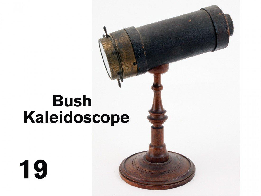 19: Bush Kaleidoscope