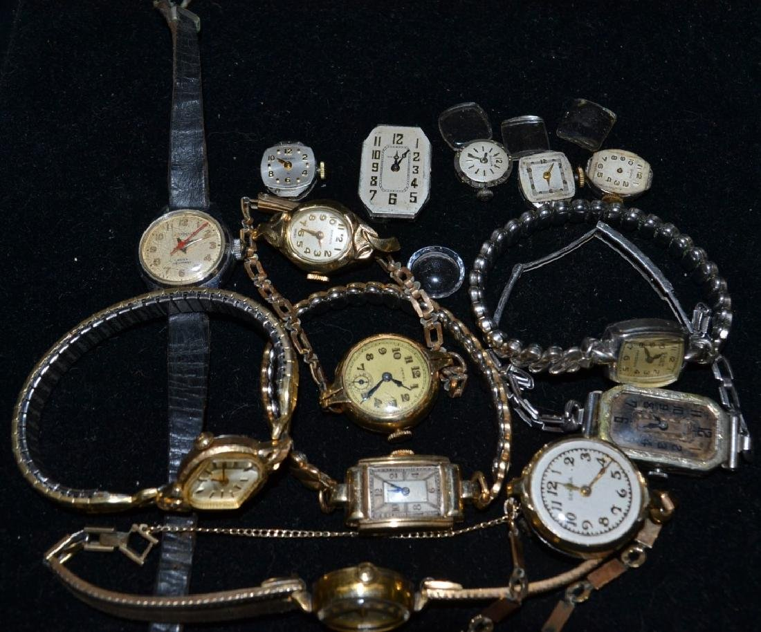 Ladies Watches and Movements