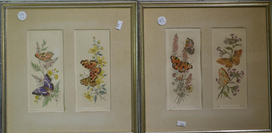 Pair of Framed Butterfly Prints