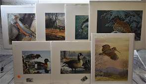 Group of Wildlife Prints by Ned Smith & others