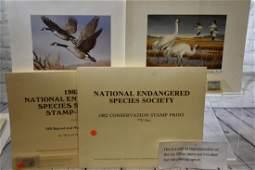 Grouping of Wildlife Prints by Richard Bishop